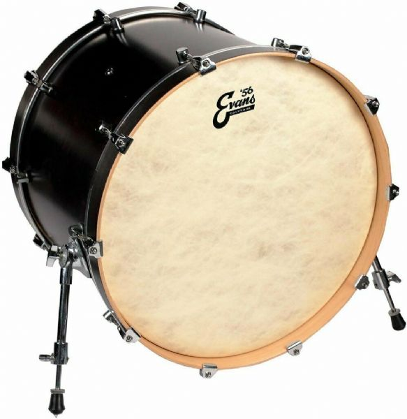 Evans 16 inch Calftone Resonant Bass Drum Head - BD16CT